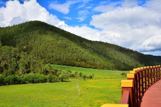 香格里拉自然清新美景