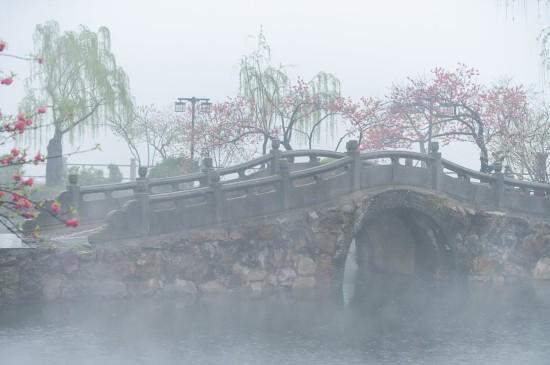 春季烟雨小镇美景