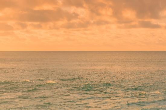 夏天的海边主题