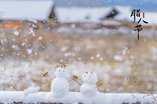 腊八节日的美丽雪景