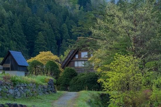 日本的乡野田园风光