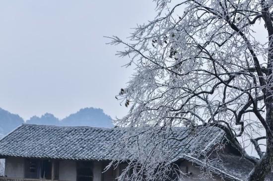 雪后唯美迷人冰凌景色