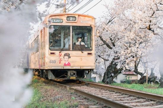 开往樱花国度的电车