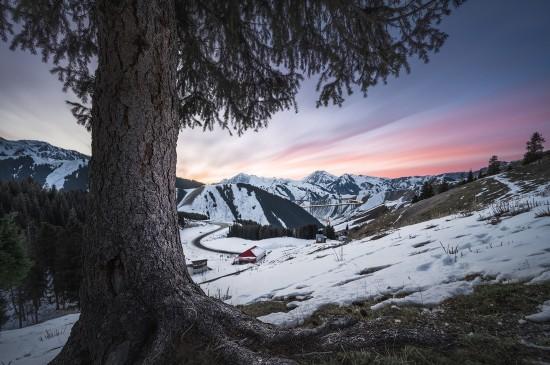 冬日寂静唯美雪景