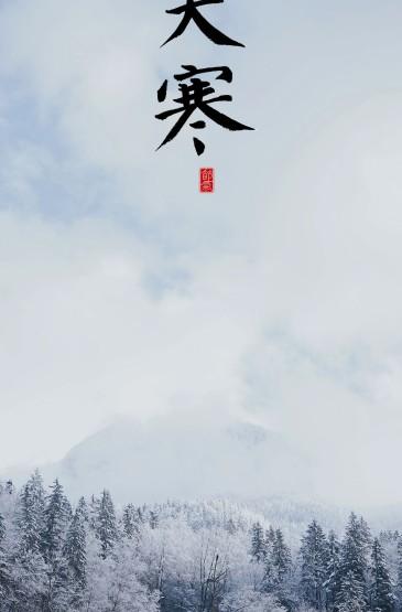 传统节气大寒迷人雪景