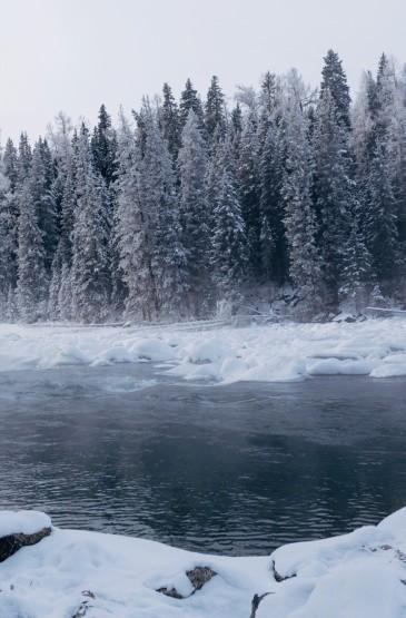 冬日优美迷人雪景