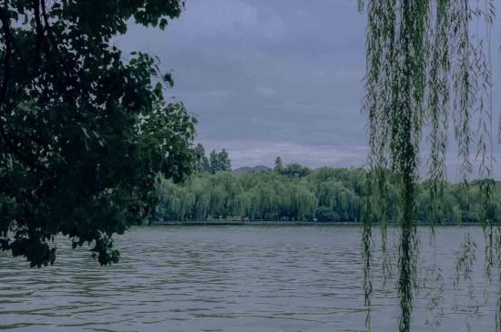 西湖边的清新养眼景色