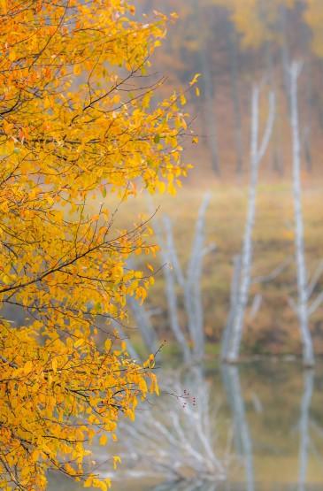 内蒙古公主湖秋天自然美