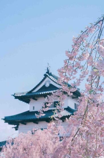 日本十二天守阁四季美景
