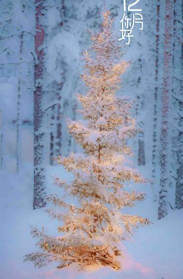 12月你好迷人的大雪风光
