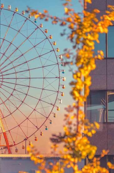 秋日暮色下的美丽街景